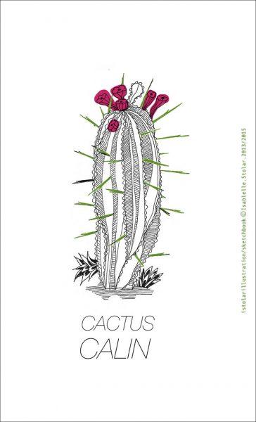 cactus calin copy