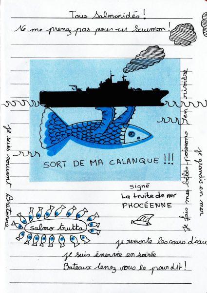 SB truite de mer