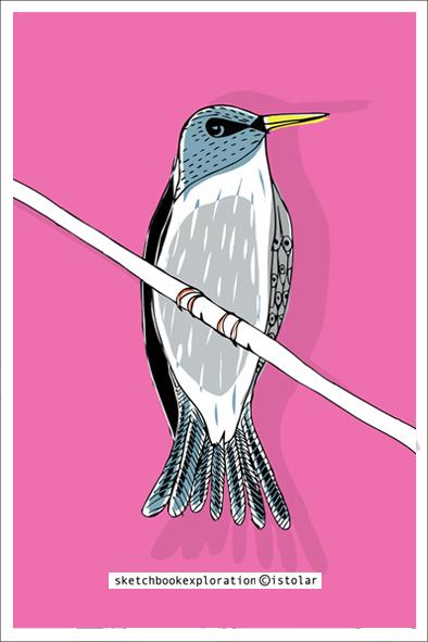 carte oiseaux rosemini